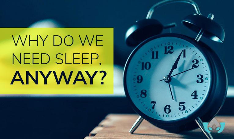 Why-Do-We-Need-Sleep-Anyway
